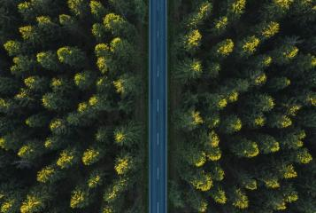 Forest Road drone view- Stock Photo or Stock Video of rcfotostock | RC-Photo-Stock