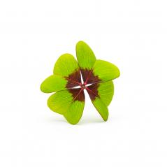 Four-leaf clover- Stock Photo or Stock Video of rcfotostock   RC-Photo-Stock