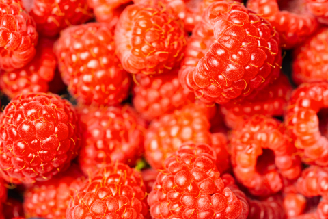 Fresh and sweet raspberries background or backdrop- Stock Photo or Stock Video of rcfotostock | RC-Photo-Stock