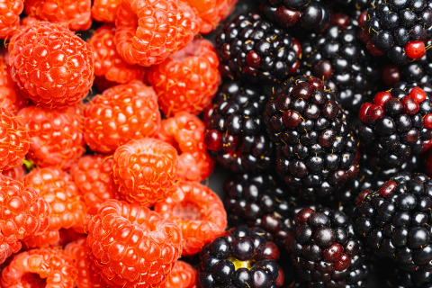 Fresh blackberrys and raspberrys background or backdrop. Vegan and vegetarian concept. Macro texture of blackberry and raspberry berries. Summer healthy food. - Stock Photo or Stock Video of rcfotostock | RC-Photo-Stock