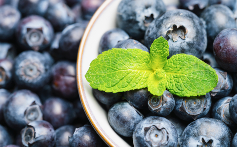 Fresh blueberries in a bowl with mint leaf background or backdrop. Vegan and vegetarian concept. Macro texture of blueberry berries. Summer healthy food. - Stock Photo or Stock Video of rcfotostock | RC-Photo-Stock