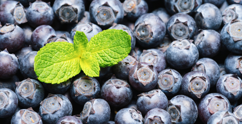 Fresh blueberries with mint leaf background or backdrop. Vegan and vegetarian concept. Macro texture of blueberry berries. Summer healthy food. - Stock Photo or Stock Video of rcfotostock | RC-Photo-Stock
