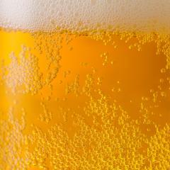 fresh golden beer- Stock Photo or Stock Video of rcfotostock | RC-Photo-Stock