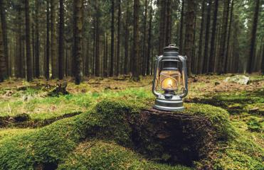 Gasoline lantern standing on a tree trunk in the deep forest, Hiker Concept image, copyspace for your individual text. - Stock Photo or Stock Video of rcfotostock | RC-Photo-Stock