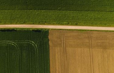 geometric shapes of agricultural parcels of different crops in yellow and green colors. Aerial view shoot from drone directly above field- Stock Photo or Stock Video of rcfotostock | RC-Photo-Stock