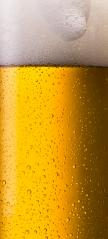 german beer glass with dew drops and froth- Stock Photo or Stock Video of rcfotostock | RC-Photo-Stock