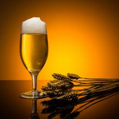 german beer with corn- Stock Photo or Stock Video of rcfotostock | RC-Photo-Stock