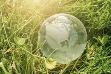 Glass globe in the grass concept for environment protection- Stock Photo or Stock Video of rcfotostock | RC-Photo-Stock