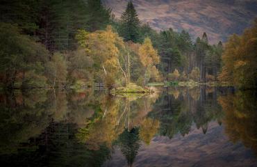 Glencoe Lochan herbstliche Bäume, Spiegelung, Schottland, Vereinigtes Königreich : Stock Photo or Stock Video Download rcfotostock photos, images and assets rcfotostock   RC-Photo-Stock.: