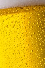 golden beer background- Stock Photo or Stock Video of rcfotostock | RC-Photo-Stock