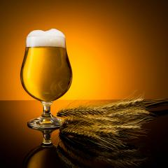 golden beer glass with corn- Stock Photo or Stock Video of rcfotostock | RC-Photo-Stock