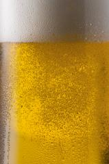 golden beer with dew drops : Stock Photo or Stock Video Download rcfotostock photos, images and assets rcfotostock | RC-Photo-Stock.: