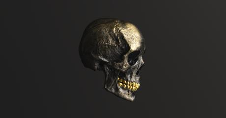 Golden Human Skull side view Pirate Poison Horror Symbol Halloween Medical. Anatomy and medicine concept image. : Stock Photo or Stock Video Download rcfotostock photos, images and assets rcfotostock   RC-Photo-Stock.: