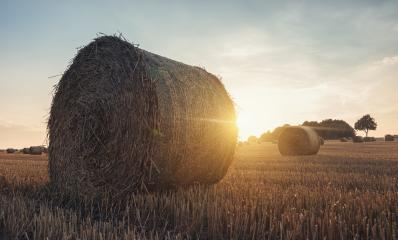 Golden sunset over farm field with hay bales- Stock Photo or Stock Video of rcfotostock | RC-Photo-Stock