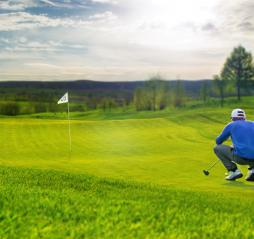 Golf putting green- Stock Photo or Stock Video of rcfotostock | RC-Photo-Stock