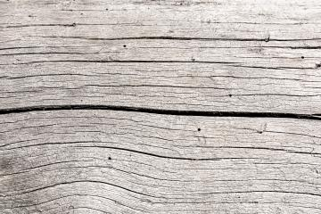 gray wood texture background- Stock Photo or Stock Video of rcfotostock | RC-Photo-Stock