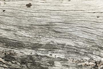 gray wood with cracks texture background : Stock Photo or Stock Video Download rcfotostock photos, images and assets rcfotostock | RC-Photo-Stock.: