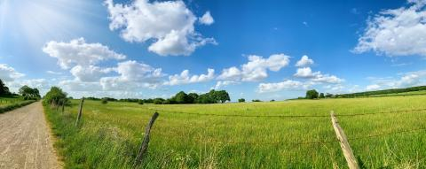 Green field with trees and blue sky. Panoramic view to grass, trees and flowers on the hill on sunny spring day : Stock Photo or Stock Video Download rcfotostock photos, images and assets rcfotostock | RC-Photo-Stock.: