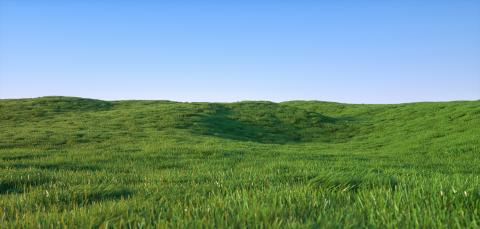 Green grass field landscape - 3D Rendering- Stock Photo or Stock Video of rcfotostock | RC-Photo-Stock