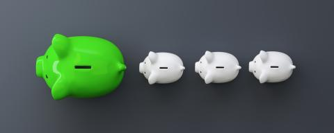green piggy bank as row leader, investment and development concept- Stock Photo or Stock Video of rcfotostock | RC-Photo-Stock