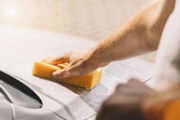 hand hold sponge for washing car- Stock Photo or Stock Video of rcfotostock | RC-Photo-Stock