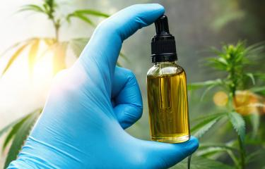 Hand holding bootle of biological and ecological herbal pharmaceutical cbd oil in a dropper at a Hemp farm. Concept of herbal alternative medicine, cbd oil, pharmaceutical industry : Stock Photo or Stock Video Download rcfotostock photos, images and assets rcfotostock | RC-Photo-Stock.: