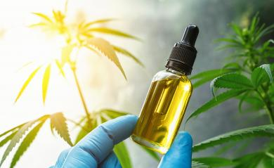 Hand holding bootle of biological and ecological herbal pharmaceutical cbd oil in a dropper at a Hemp farm. Concept of herbal alternative medicine, cbd oil, pharmaceutical industry- Stock Photo or Stock Video of rcfotostock | RC-Photo-Stock
