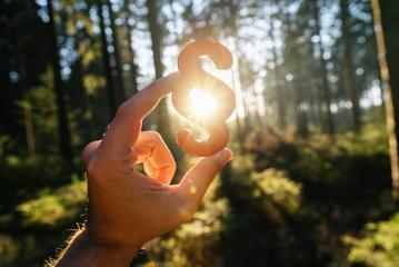 Hand holds paragraph sign in to the sun at a forest, symbol of Law and Justice concept image- Stock Photo or Stock Video of rcfotostock | RC-Photo-Stock