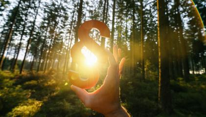 Hand holds red paragraph sign in to the sun at a forest, symbol of Law and Justice concept image- Stock Photo or Stock Video of rcfotostock | RC-Photo-Stock