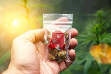 Hand showing Cannabis buds in a plastic bag with drugstore sign. Concept of herbal alternative medicine, cbd oil, pharmaceutical industry or illegal drug use- Stock Photo or Stock Video of rcfotostock | RC-Photo-Stock