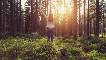 Happy Woman raised hands at sunset in the woods Lifestyle emotional concept - Stock Photo or Stock Video of rcfotostock | RC-Photo-Stock