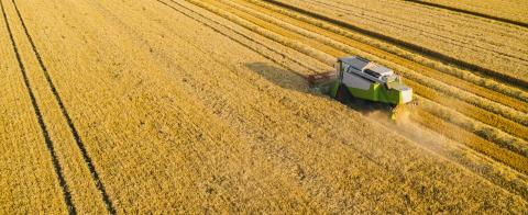 harvester on the wheat field from the top view, Drone Shot- Stock Photo or Stock Video of rcfotostock | RC-Photo-Stock