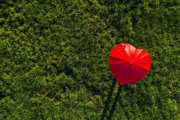 heart shape red umbrella on a green summer meadow - view from a drone- Stock Photo or Stock Video of rcfotostock | RC-Photo-Stock