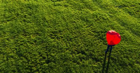 heart shape umbrella on a green summer meadow - view from a drone : Stock Photo or Stock Video Download rcfotostock photos, images and assets rcfotostock | RC-Photo-Stock.: