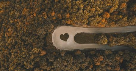 heart symbol in a curved Road in the forest at autumn, drone shot : Stock Photo or Stock Video Download rcfotostock photos, images and assets rcfotostock | RC-Photo-Stock.: