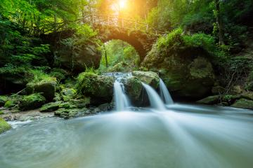 Hidden Mysteries waterfall in the forest- Stock Photo or Stock Video of rcfotostock | RC-Photo-Stock