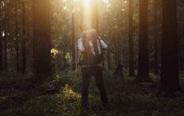 Hiker standing in the forest and watching sunset over trees- Stock Photo or Stock Video of rcfotostock | RC-Photo-Stock