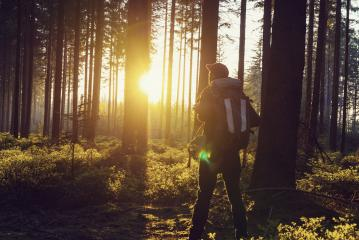 hiker stands in a forest and looks in to the sunset light. Adventure, travel, tourism, hike concept : Stock Photo or Stock Video Download rcfotostock photos, images and assets rcfotostock | RC-Photo-Stock.: