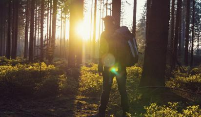 Hiker with backpack relaxe in the woods and enjoys the view of the sunset- Stock Photo or Stock Video of rcfotostock | RC-Photo-Stock