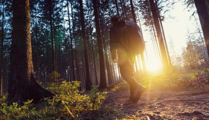 Hiker with backpack walks in forrest and enjoys nature and sunlight - Travel Life Concept image : Stock Photo or Stock Video Download rcfotostock photos, images and assets rcfotostock | RC-Photo-Stock.: