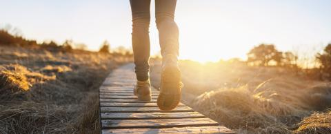 Hiking shoes on a baordwalk trail at sunset. Close-up of female hikers shoes, banner size : Stock Photo or Stock Video Download rcfotostock photos, images and assets rcfotostock | RC-Photo-Stock.: