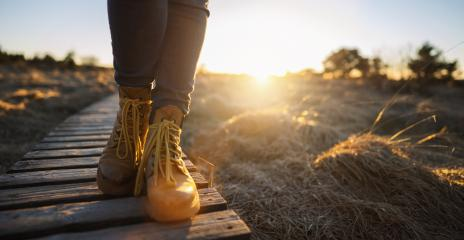 Hiking shoes on a baordwalk trail at sunset in the High Fens (Hautes Fagnes) . Close-up of female hikers shoes, with copy space for individual text : Stock Photo or Stock Video Download rcfotostock photos, images and assets rcfotostock | RC-Photo-Stock.: