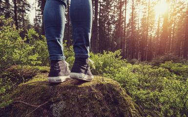 Hipster girl stands on a tree trunk in the forest -explore Life Concept image- Stock Photo or Stock Video of rcfotostock | RC-Photo-Stock