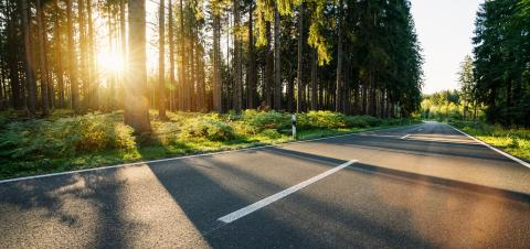 hughway into Forest in summer with beautiful bright sun rays- Stock Photo or Stock Video of rcfotostock | RC-Photo-Stock