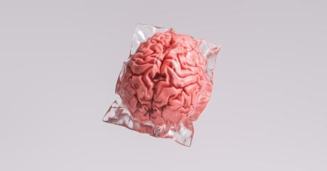 Human brain wrapped in shrink wrap as a plastic waste and medical concept image- Stock Photo or Stock Video of rcfotostock | RC-Photo-Stock
