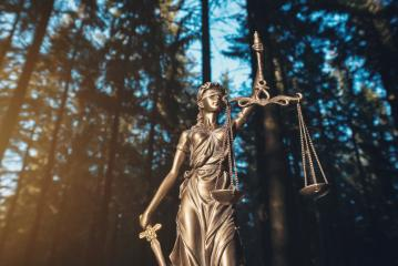 Justice scale in the woods- Stock Photo or Stock Video of rcfotostock | RC-Photo-Stock