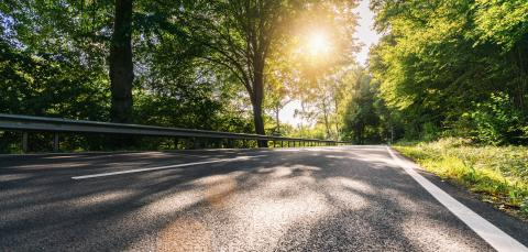 Long Curvy Forest Road In Alpine Mountains at summer : Stock Photo or Stock Video Download rcfotostock photos, images and assets rcfotostock | RC-Photo-Stock.: