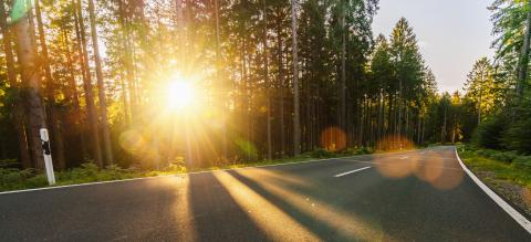 Long Curvy Forest Road In Alpine Mountains at sunset- Stock Photo or Stock Video of rcfotostock | RC-Photo-Stock