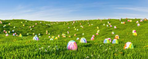 Looking for many easter eggs on green meadow as a panorama header : Stock Photo or Stock Video Download rcfotostock photos, images and assets rcfotostock | RC-Photo-Stock.: