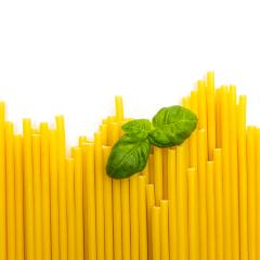 macaroni noodels in a row with basil leaf- Stock Photo or Stock Video of rcfotostock   RC-Photo-Stock